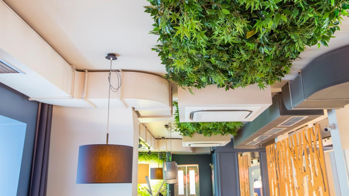 teto de espaço comercial projetado com bioarquitetura